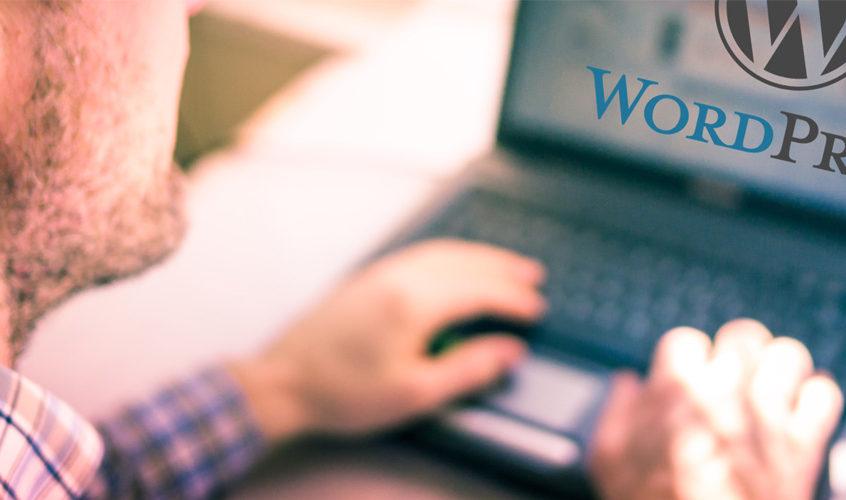 Hiring A WordPress Expert
